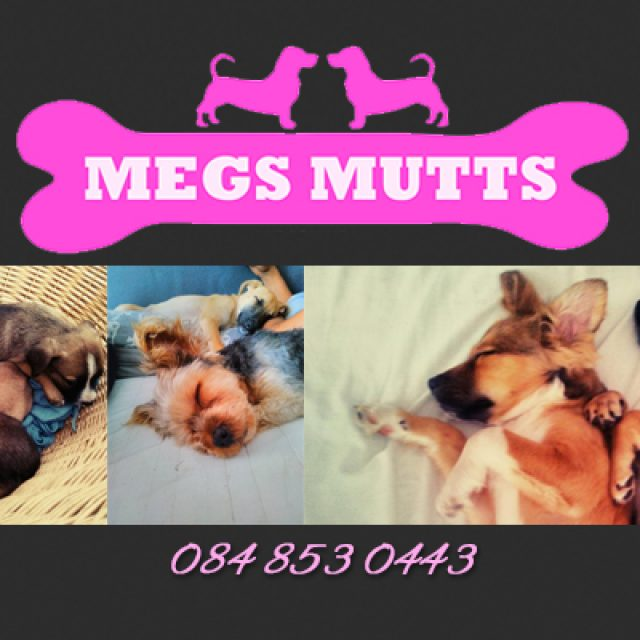 Megs Mutts Rescue